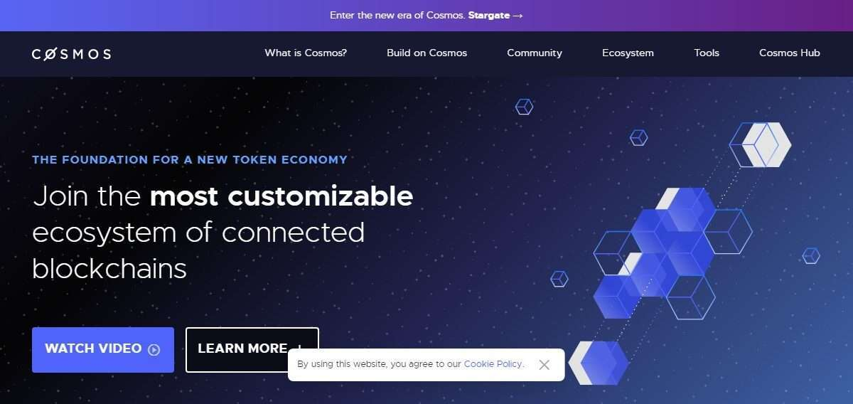 Cosmos.network Coin Review: Guide About Cosmos.network