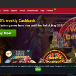 Shangrilalive.com Casino Review : Quick and Easy-To-Use