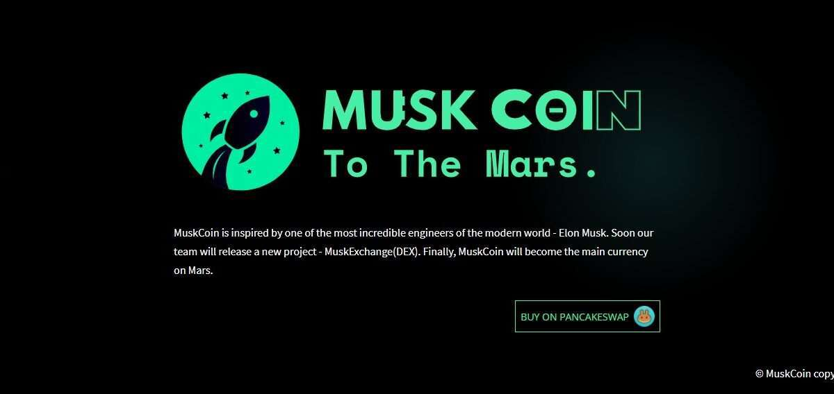 Muskcoin.space Airdrop Review: The Most Incredible Engineers