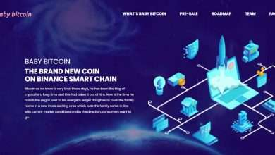 What Is BabyBitcoin(BABYBITC) Coin Review?: Guide About BabyBitcoin