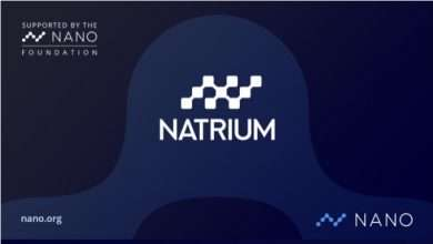 Natrium Wallet Reviw: - Secure Pin and Biometric Authentication