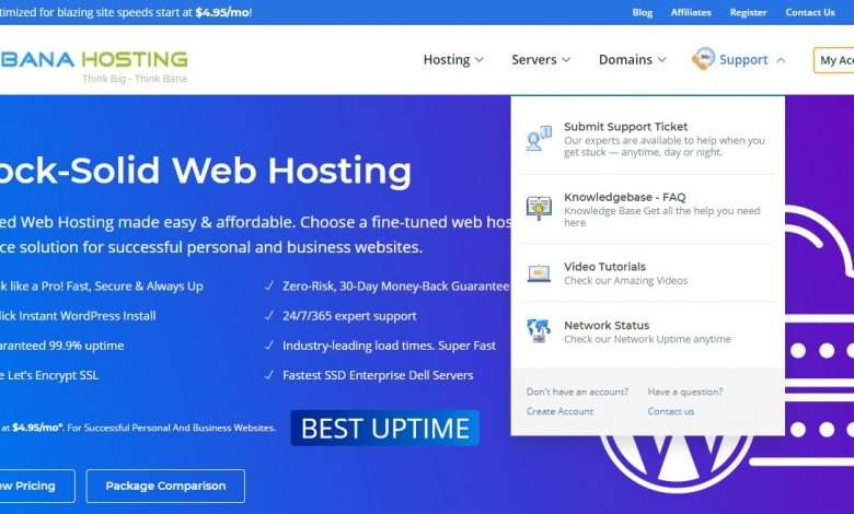 BanaHosting Advertising Review : 10% lifetime recurring commission on each sale
