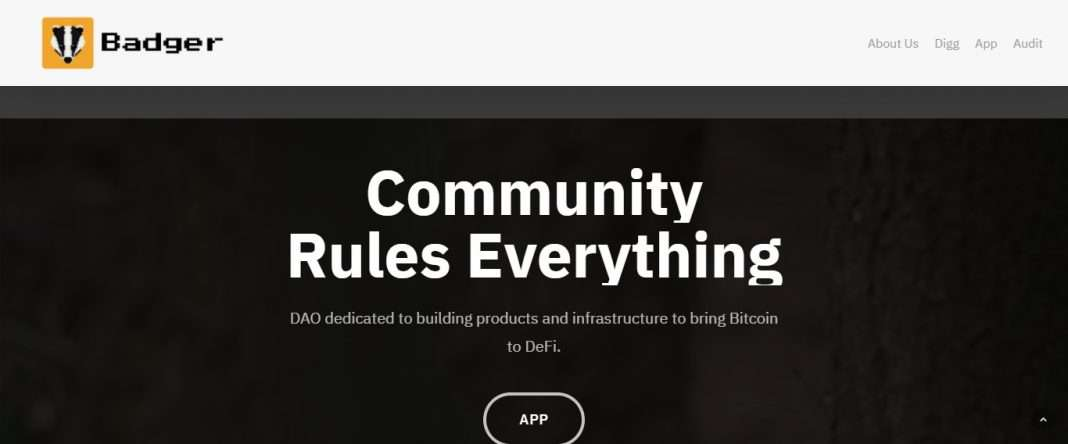 Badger DAO Defi Coin Review: Community Rules Everything